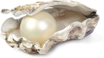 pearl-in-clam